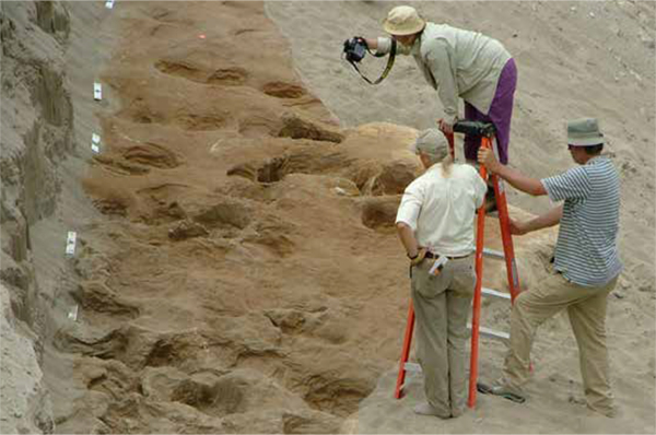 Photographer, Neffra Matthews, BLM, takes overlapping  photographs to enable photogrammetry of the track site.