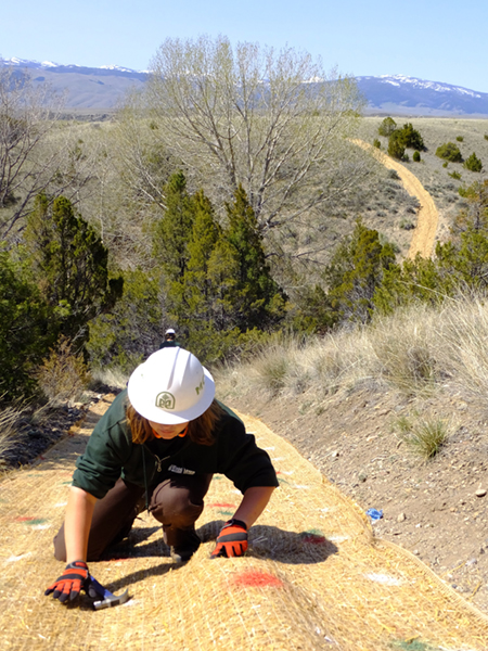 A Montana Conservation Corps member secures erosion control fabric to help native plants establish on a steep hillside.