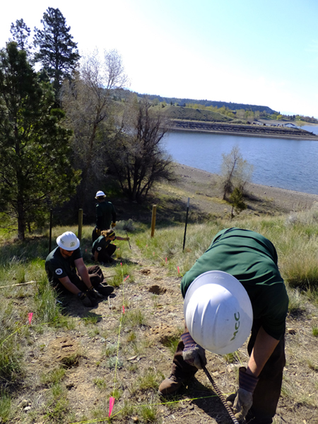 Montana Conservation Corps members rake and seed test plots with native vegetation to restore an OHV trail.
