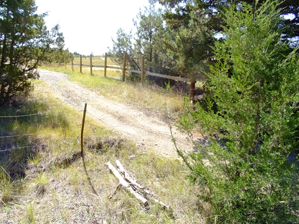 This unauthorized trail, created when someone cut the boundary fence, has seen heavy OHV use but will be restored this season with help from the MCC.