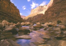 Image of the Colorado River flowing thru the Grand Canyon