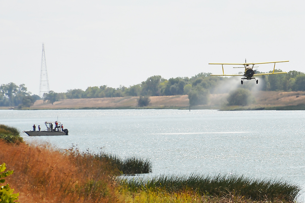 Crop duster applies fertilizer into Sacramento Deep Water Ship Channel Oct. 1, 2018 (Reclamation photo by Patrick Moore / Released)