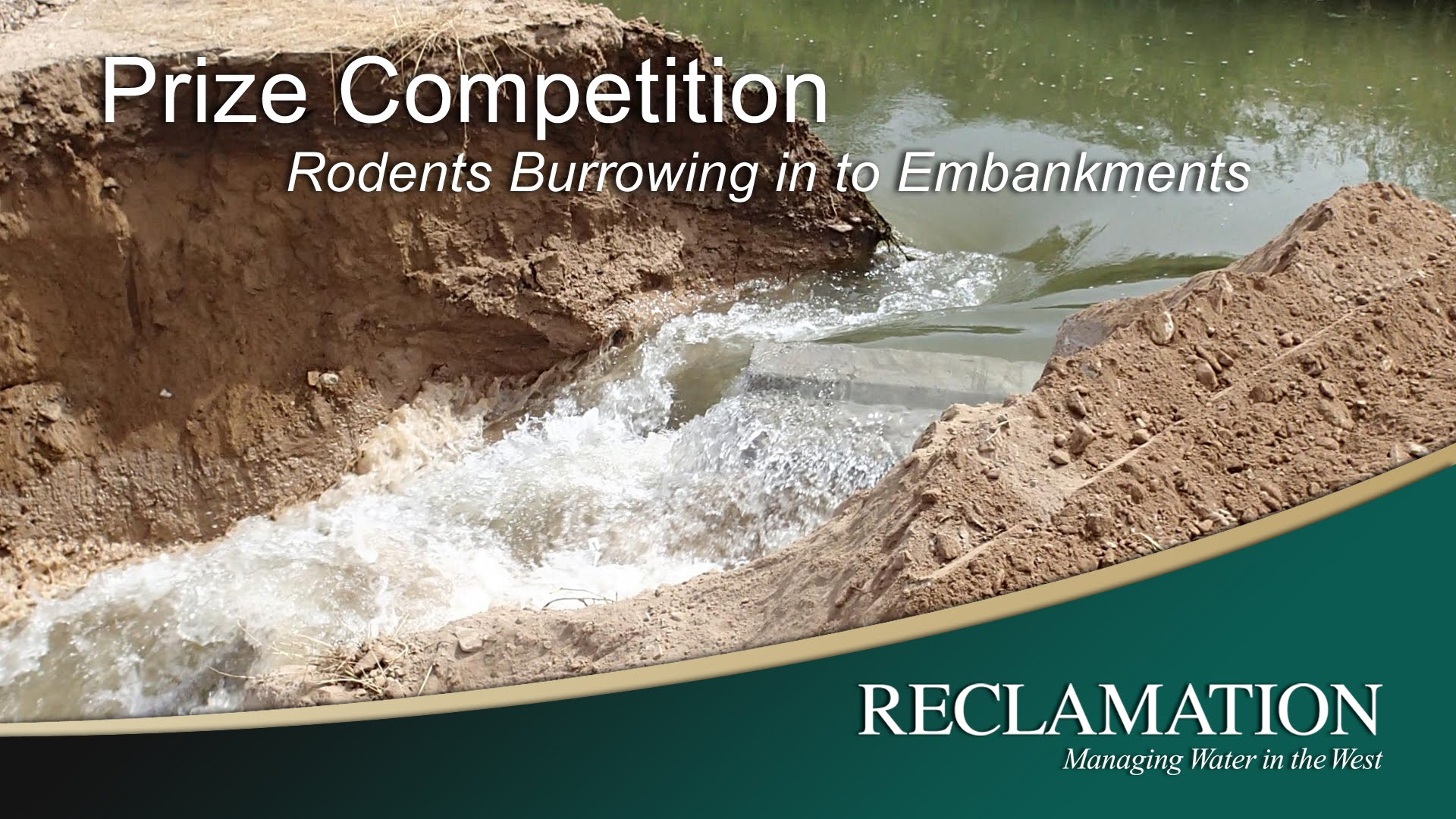 Burrrowing Rodent Prize Competition