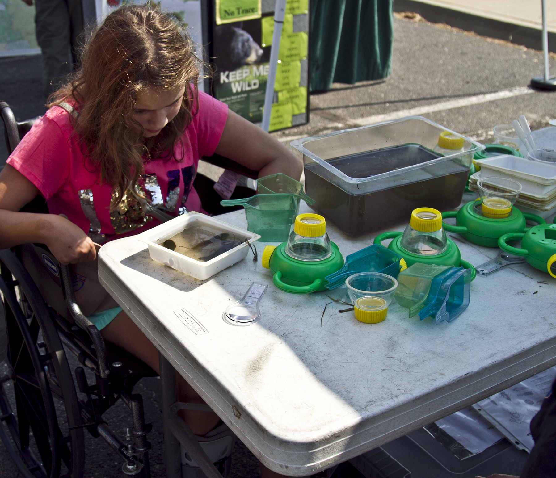 A child observes aquatic wildlife at one of the booths during the C.A.S.T. for Kids event at New Melones Lake