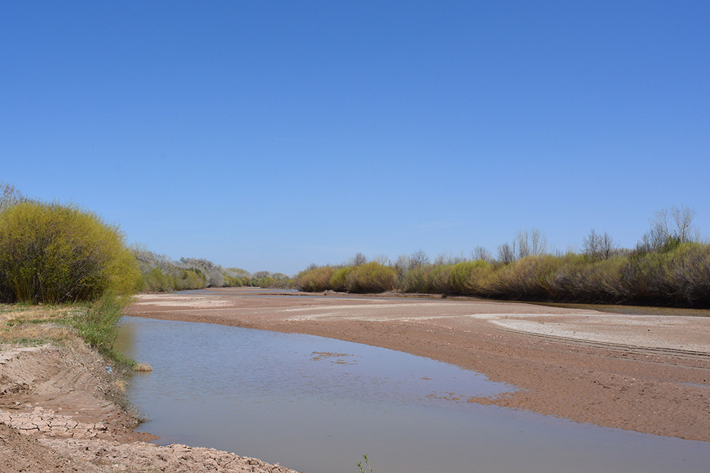 The drying riverbed of the Middle Rio Grande near the Bosque del Apache National Wildlife Refuge on April 4, 2018.