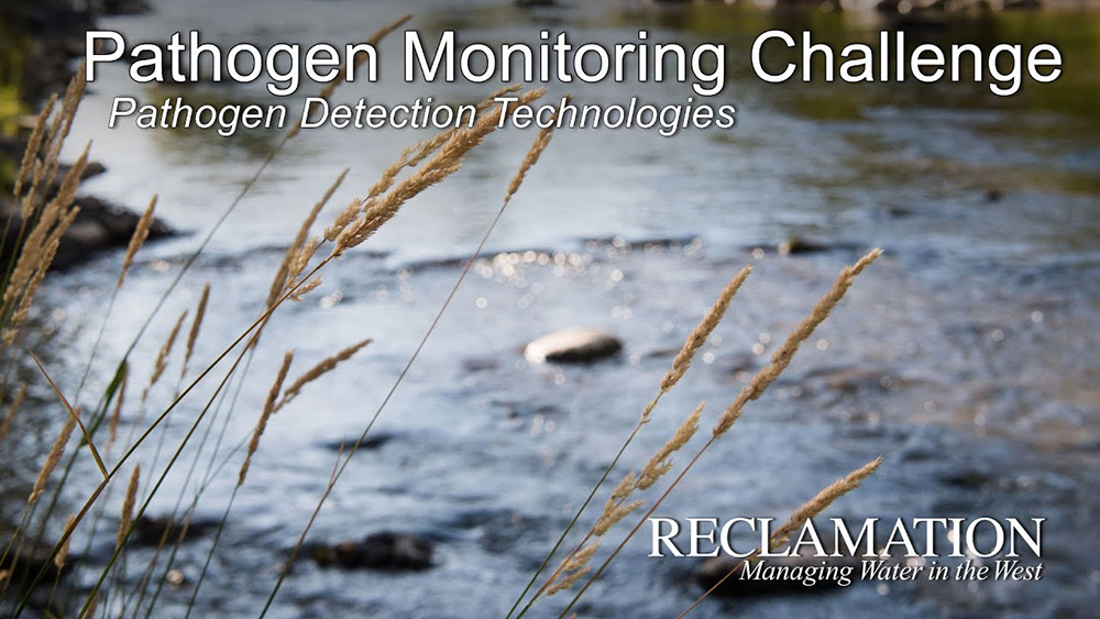 Pathogens Monitoring Challenge.