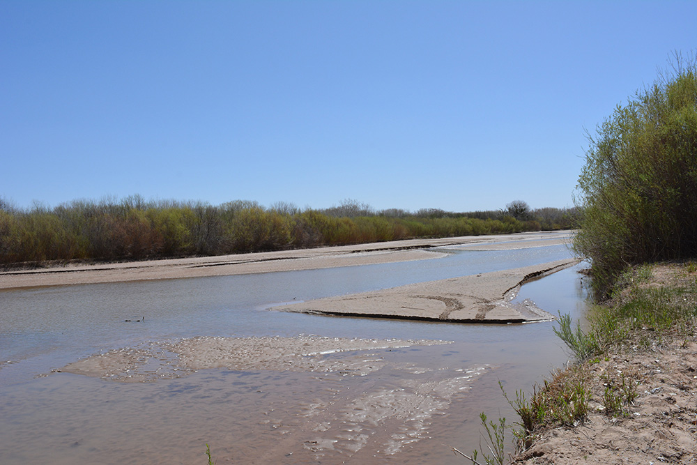 The drying riverbed of the Middle Rio Grande near the Bosque del Apache National Wildlife Refuge. The photo was taken on April 4, 2018.