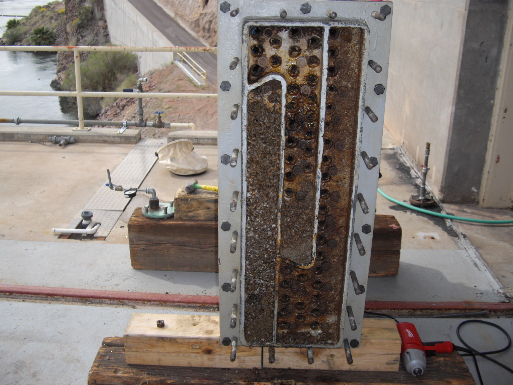 Biofouling at Parker Dam before UV treatment