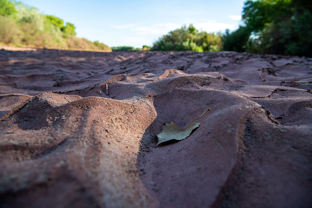 A dry riverbed in the western United States.