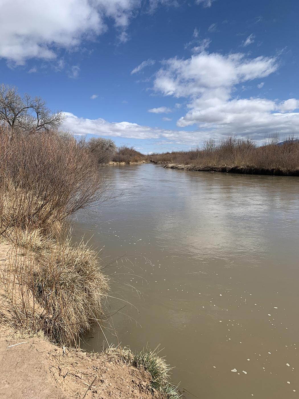 Rio Grande upstream near Montano, New Mexico