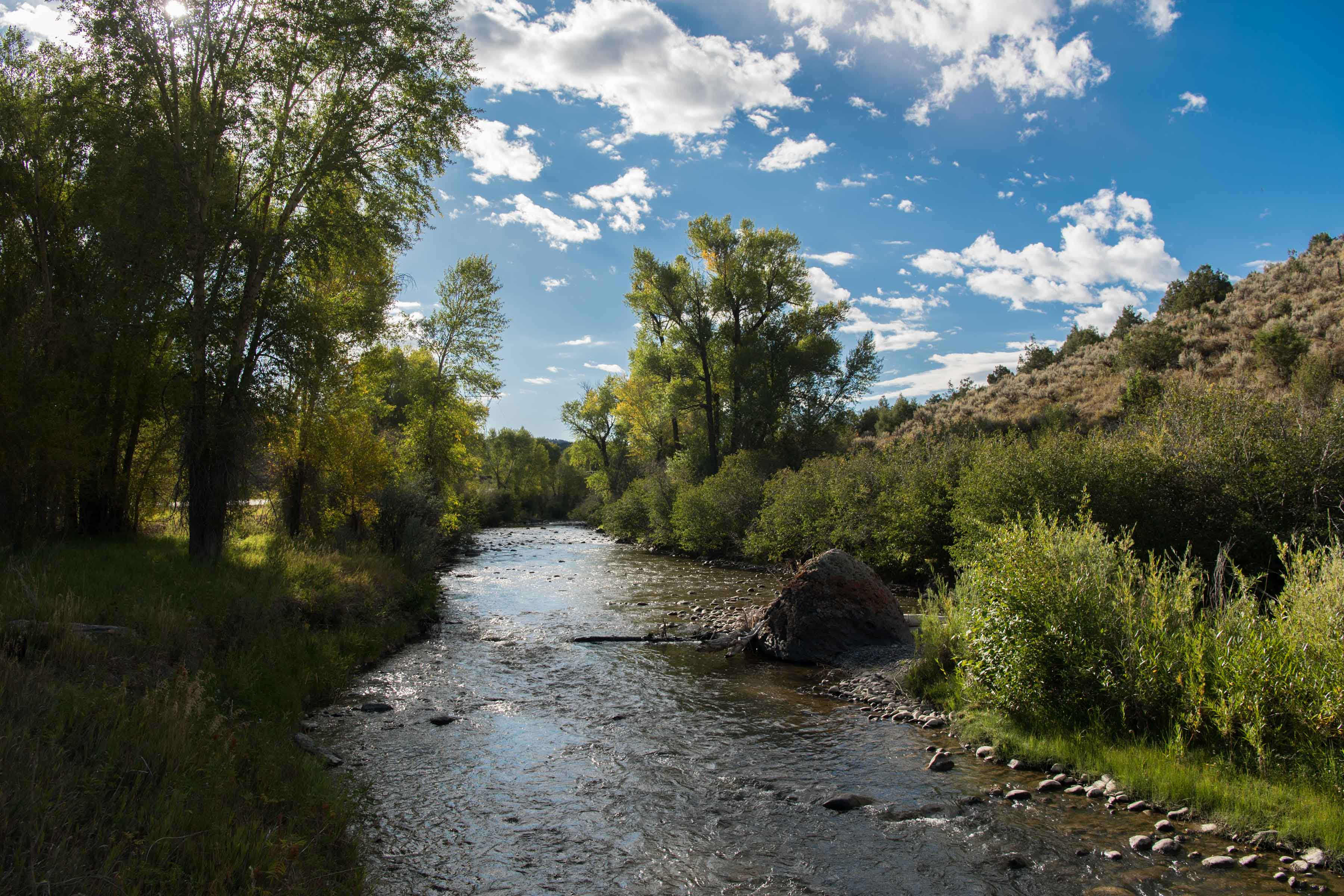 The Cimarron River, a tributary of the Gunnison River, flowing in Colorado.