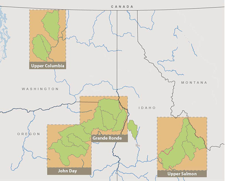 FCRPS Tributary Habitat Program PN Region Bureau of Reclamation