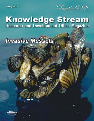 The knowledge stream cover that shows a clump of mussels.