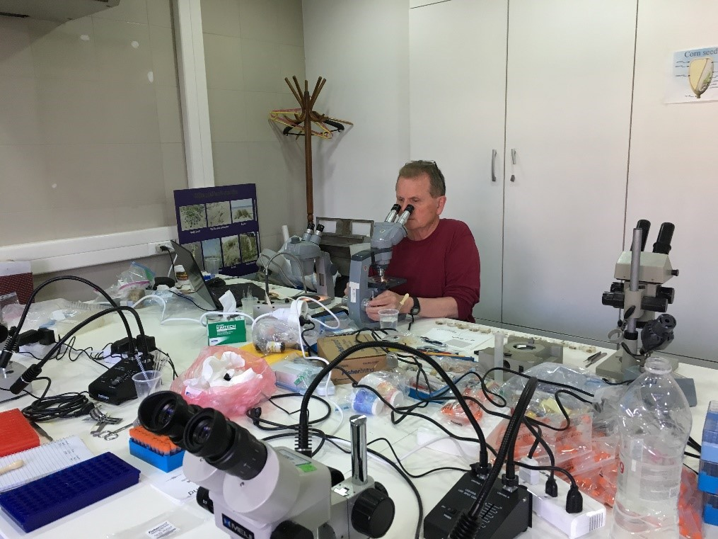 Dr. Dan Molloy dissecting dreissenid mussels to look for parasites in Montenegro, April 2017.