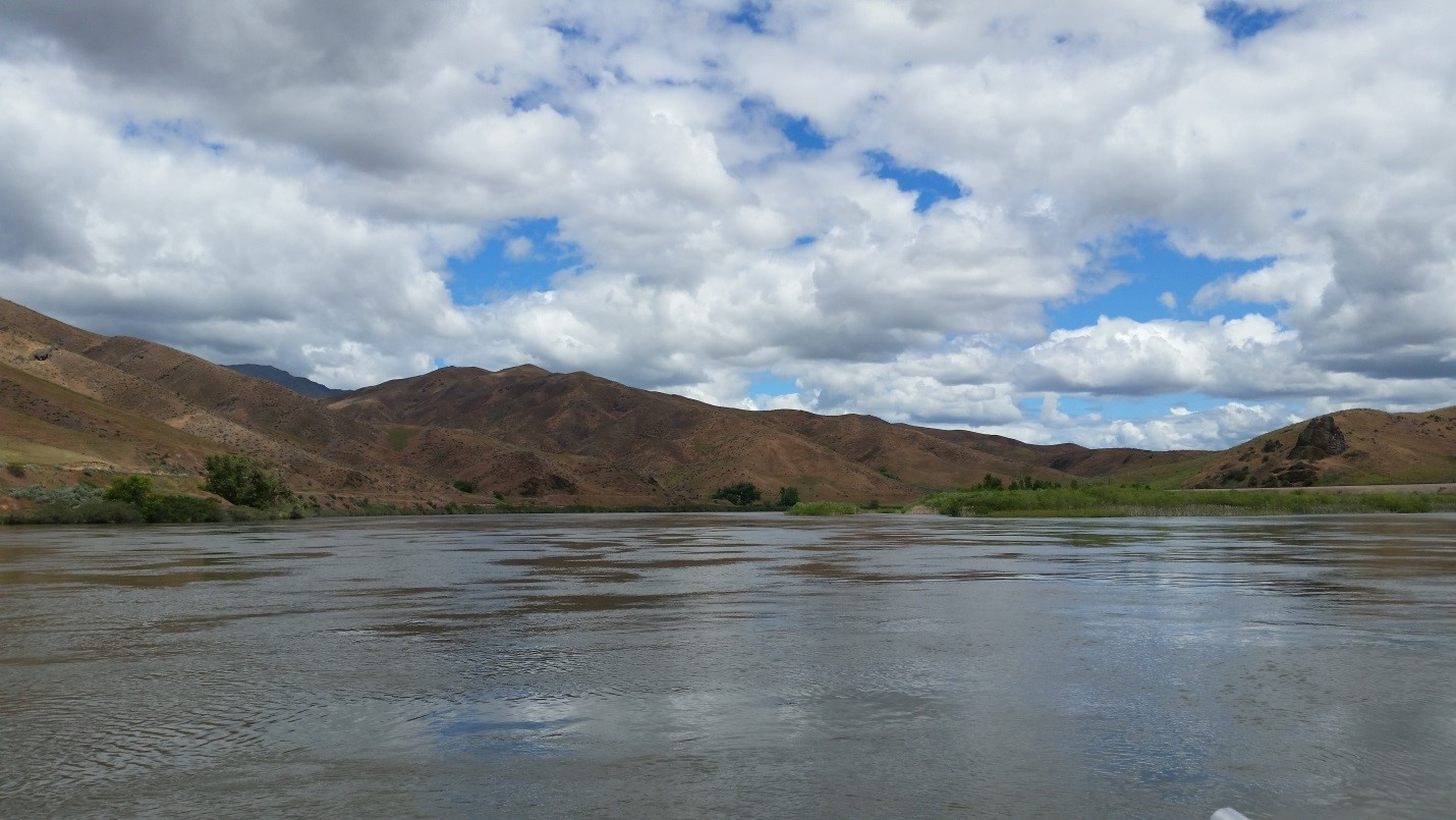 Black Canyon Reservoir, looking upstream at sediment depositing within the river delta.