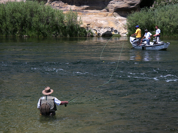 Colorado river storage project navajo dam photo gallery for San juan fly fishing